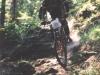 dh-podkonice-2000-27-murin