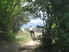 ride-podkonice-2009-swing-07