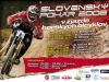 poster2008-sp-adamoto